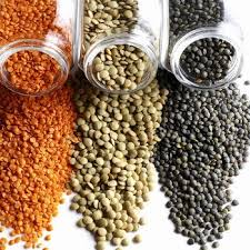 lentils are a great plant based protein.